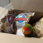 Jellybean received his parcel