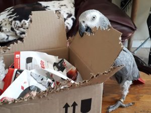 Our packaging make for great enrichment.